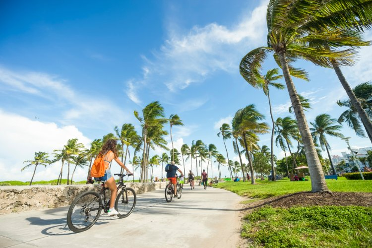 People riding bikes past palm trees in Miami