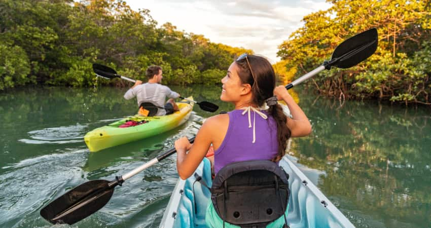 Two kayakers paddle through mangroves in the Everglades