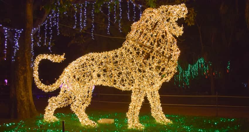 A holiday light display shaped like a lion