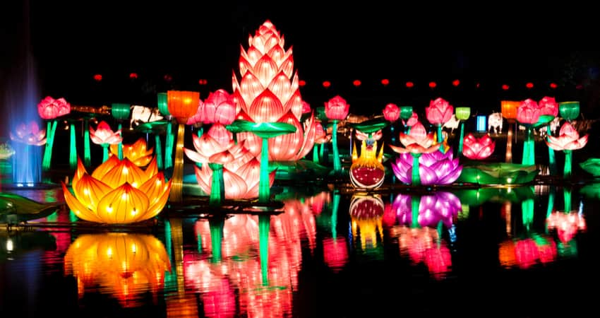 Flower lanterns on the water at a lights festival